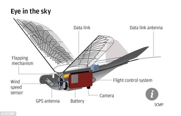 dove drones